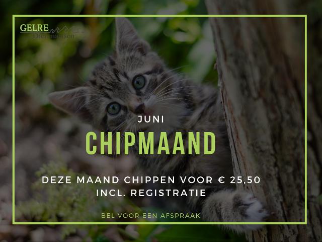 Chipmaand