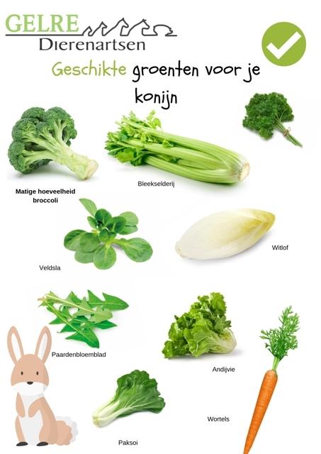 Geschikte groenten voor het konijn gelre