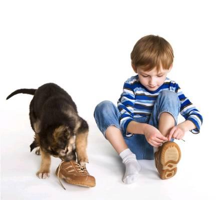 400 Px Kind En Hond
