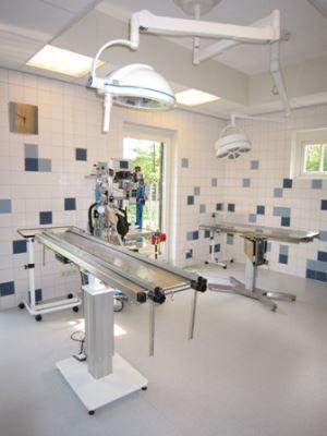 Operatiekamer Dierenkliniek Hengelo