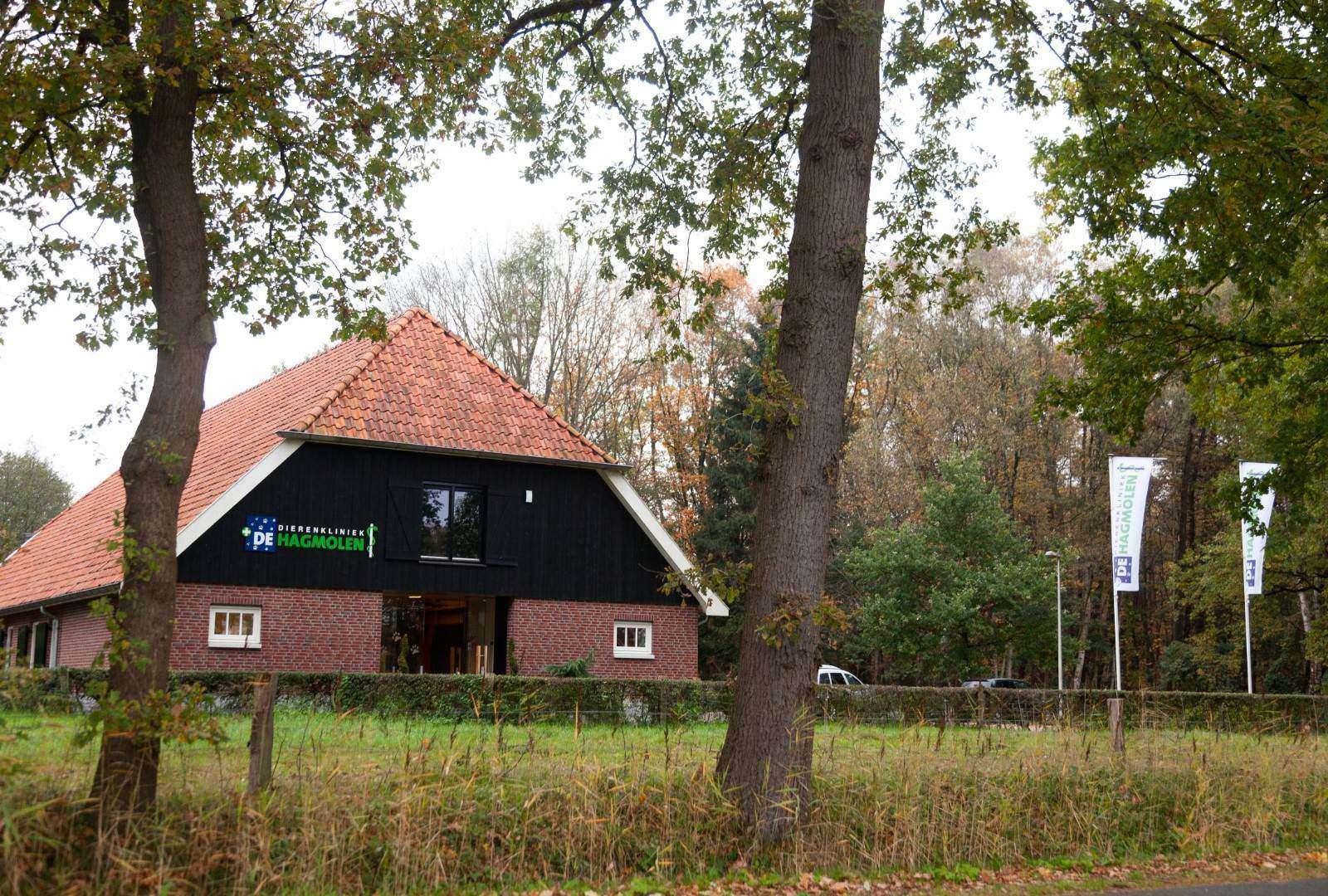 Dierenkliniek-dierenarts-omgeving-Hengelo