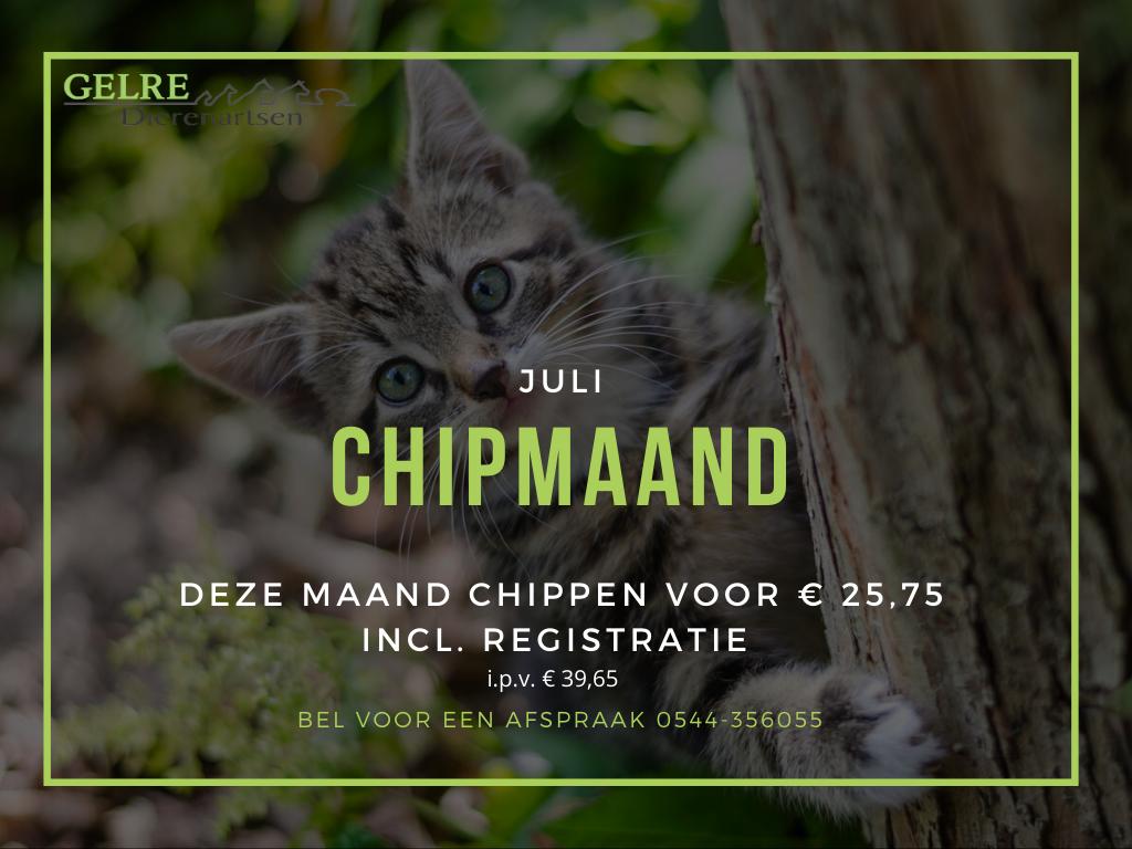 Chipmaand1